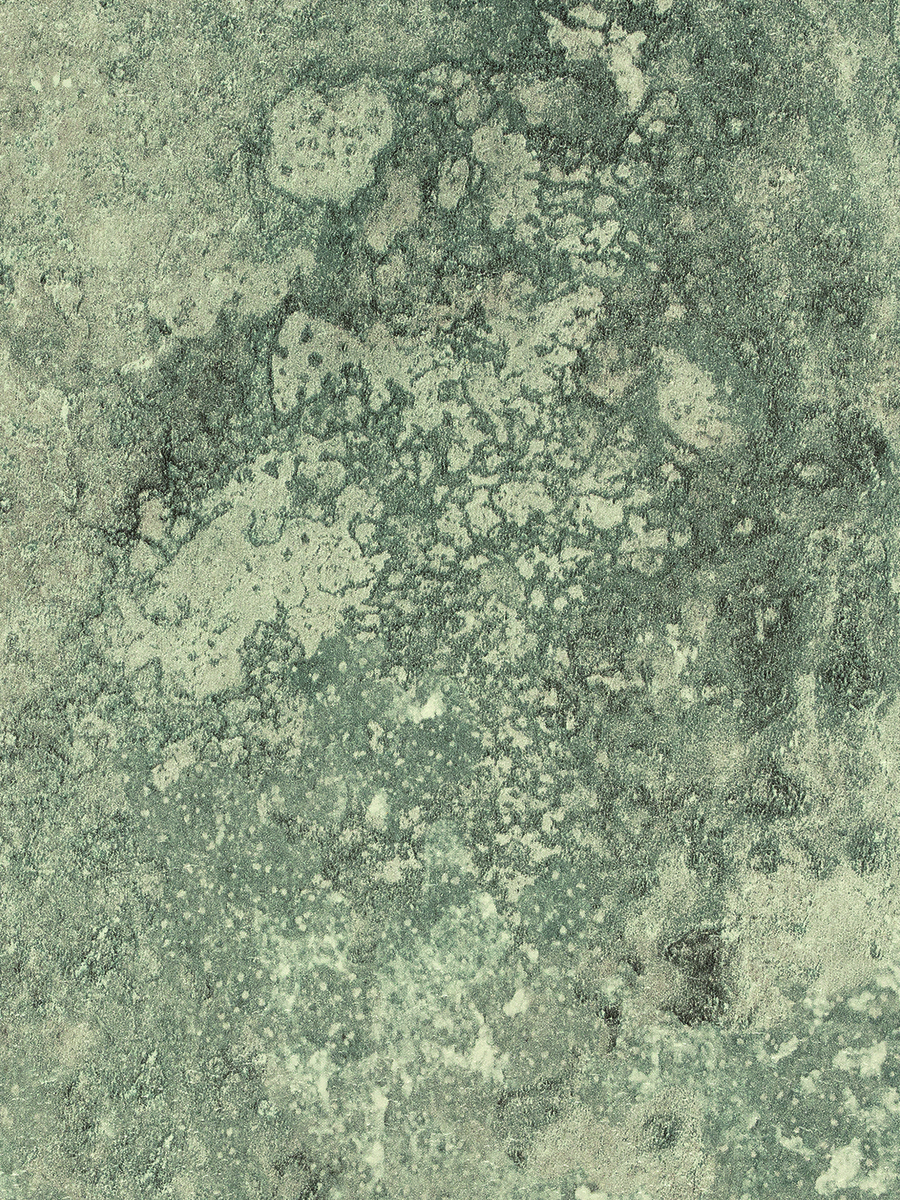 Selkie, Textured Concrete