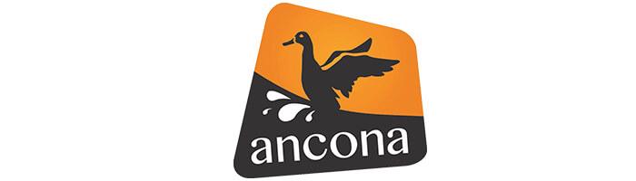 Ancona Logo